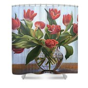 Red Tulips, Glass Vase Shower Curtain