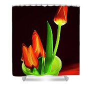 Red Tulips In Vase # 4. Shower Curtain