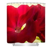 Red Velvet Twin Geraniums  Shower Curtain by Shelli Fitzpatrick