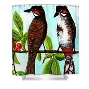 Red-whiskered Bulbul Bird, #246 Shower Curtain
