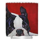 Red White And Black Shower Curtain