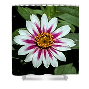 Red White And Yellow Flower Shower Curtain