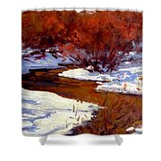 Red Willow Creek Shower Curtain