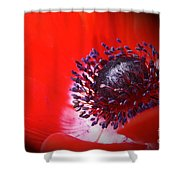 Red Windflower Shower Curtain