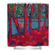 Red Woods Shower Curtain