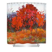 Red Woods Painting Shower Curtain