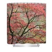 Red Zen Shower Curtain