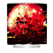 Red Zinnia Abstract Shower Curtain