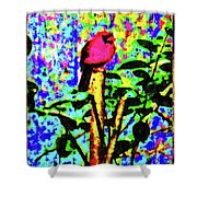 Redbird Dreaming About Why Love Is Always Important Shower Curtain