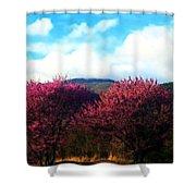 Redbud In The Blue Ridge Shower Curtain