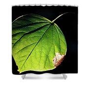Redbud Leaf Shower Curtain