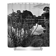Redd's Pond Lupines Sunrise Black And White Shower Curtain