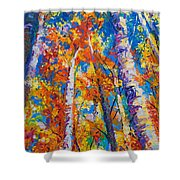 Redemption - Fall Birch And Aspen Shower Curtain by Talya Johnson