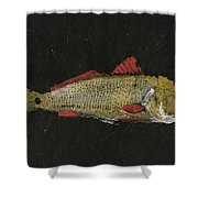 Redfish Shower Curtain by Captain Warren Sellers