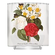 Redoute: Bouquet, 1833 Shower Curtain