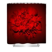 Red,red Shower Curtain
