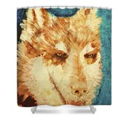 Red's Wolf Shower Curtain