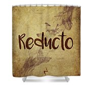 Reducto Shower Curtain