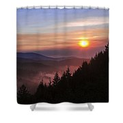 Redwood Sun Shower Curtain by Chad Dutson