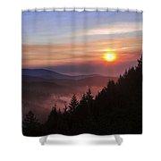 Redwood Sun Shower Curtain