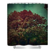 Reed Tree Shower Curtain