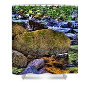 Reeder Creek From Under The Bridge Shower Curtain