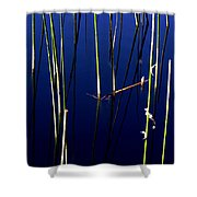 Reeds Of Reflection Shower Curtain