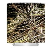 Reeds Reflected Shower Curtain