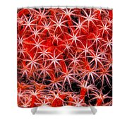 Reef Art - Octocoral Shower Curtain