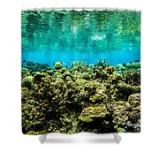 Reef At Ahnd Atoll Shower Curtain
