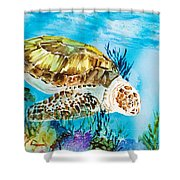 Reef Surfin Shower Curtain by Tanya L Haynes - Printscapes