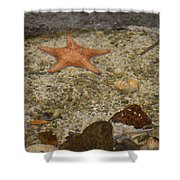 Reefers Shower Curtain