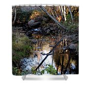 Reflect Upon Autumn Shower Curtain