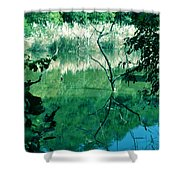 Reflected Branches Shower Curtain