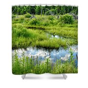 Reflected Clouds In Grass Shower Curtain