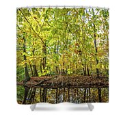 Reflected Color Of Autumn Shower Curtain