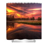Reflected Reality Shower Curtain