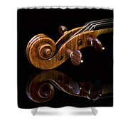 Reflected Scroll Shower Curtain