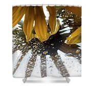 Reflected Yellow Petals Shower Curtain