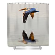 Reflecting Flight Shower Curtain