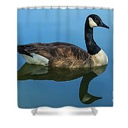 Reflecting Grace Shower Curtain