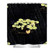 Reflecting Pool Lilies Shower Curtain