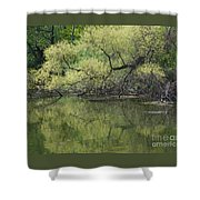 Reflecting Spring Green Shower Curtain