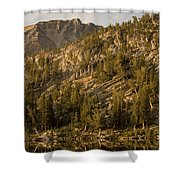 Reflecting Thoughts Shower Curtain