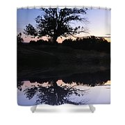 Reflecting Tree Shower Curtain