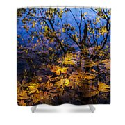 Reflection And Transparency Shower Curtain