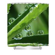 Reflection Beads Shower Curtain