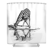 A Tall Drink Of Water Shower Curtain