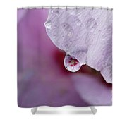 Reflection Of Flowers Shower Curtain
