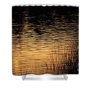 Reflection On A Sunset Shower Curtain
